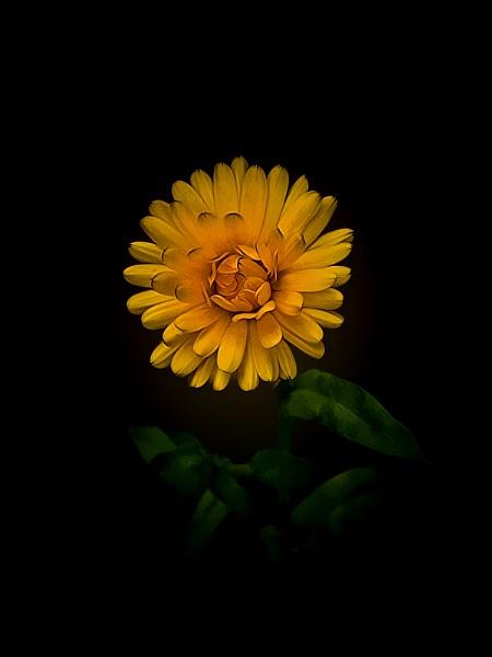 Darkness by Big_Beavis