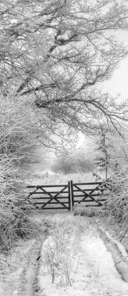 Gate to winter wonderland