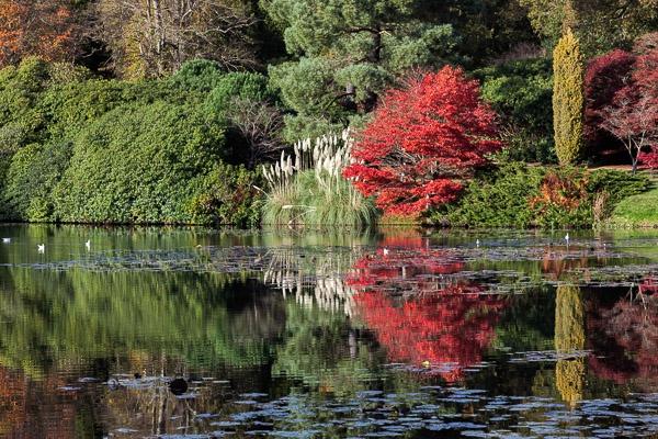 Sheffield Park Gardens by Phil_Bird