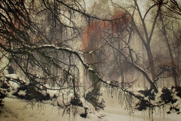 Winter nightmare by atenytom