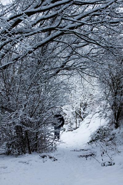 Snow by Juditha