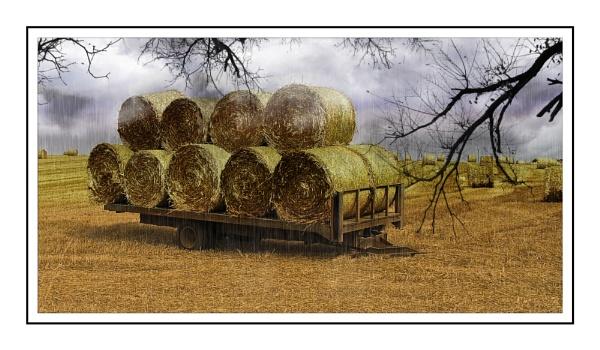 Hay Wain by bigwheels