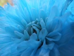 feeling a bit blue