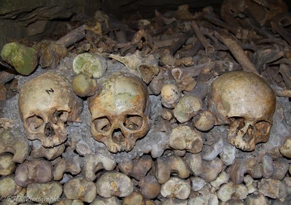 Dem Bones by RHMPhotographic