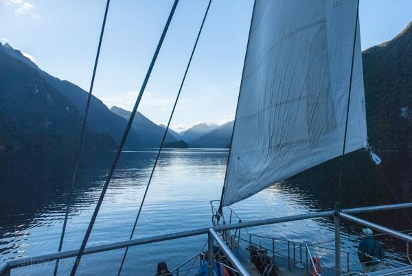 Doubtful Sound 4 - Sail away