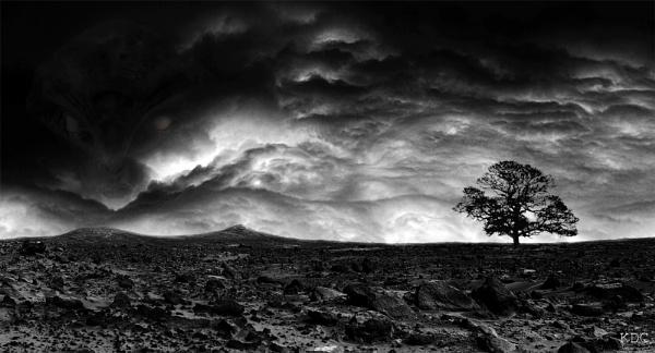 Oak on Mars by KDC