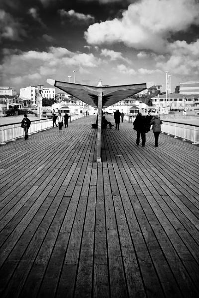 Pier by TSP