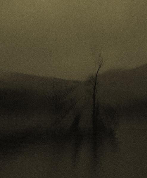 At the waters edge Llyn Gwynant by wynn469