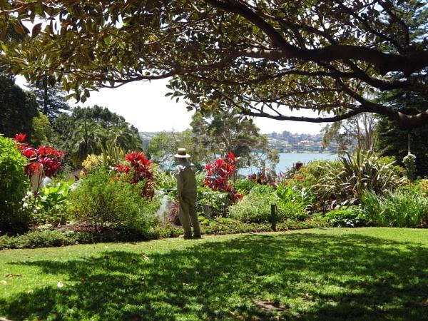 Goverment House gardens Sydney Australia by Regbaron
