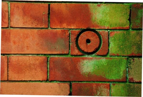 Wall Xpression! by Chinga