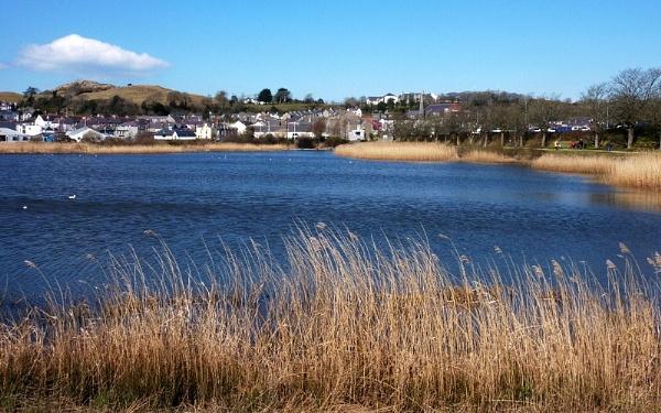 Pwllheli behind the harbour by netta1234