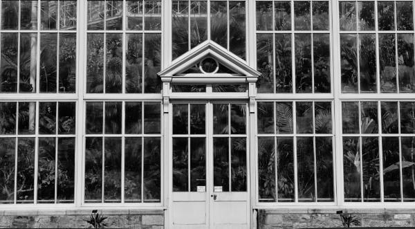 Fern House by Hilmar