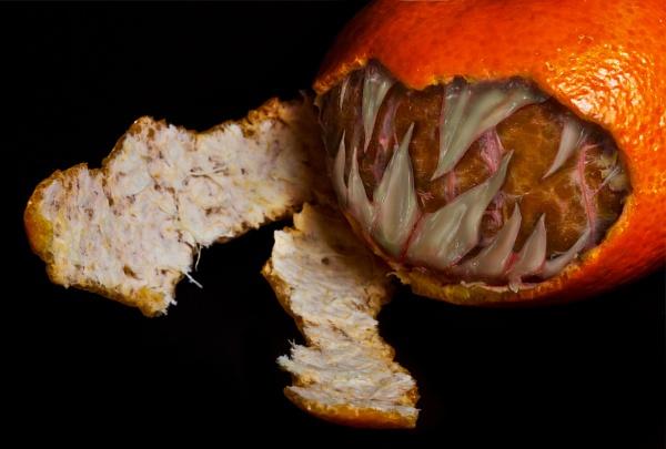 Bad Fruit by kel55
