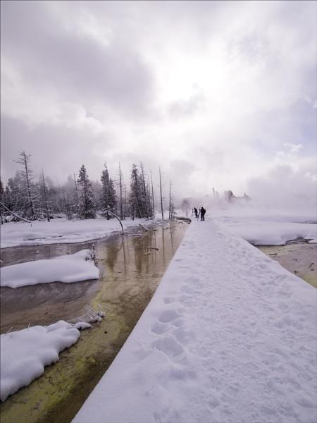 Boardwalk Tangled creek by maggietear