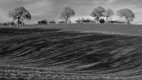 Dark Ark Lane, Cheshire by dgould
