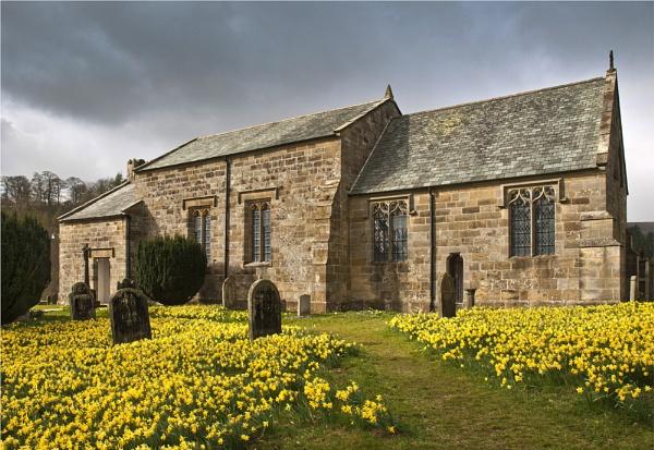 Daffodil  time Farndale Church by phil99