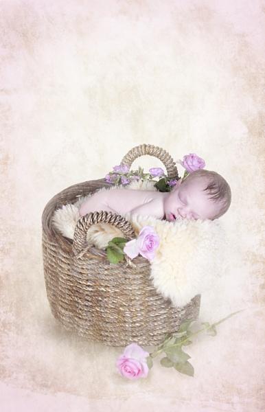 Tianna rose by Angi_Wallace
