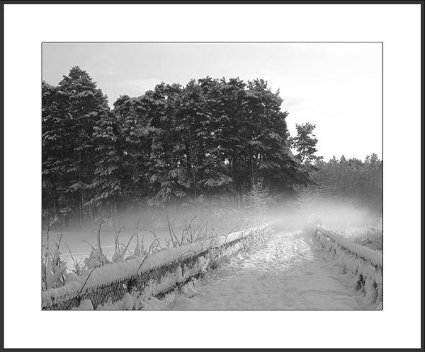 Burnie Path by Jolind
