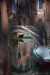 Always Venice