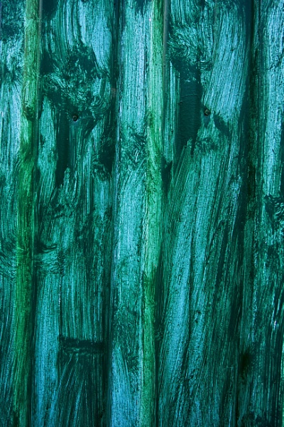 Green Door by stevew10000