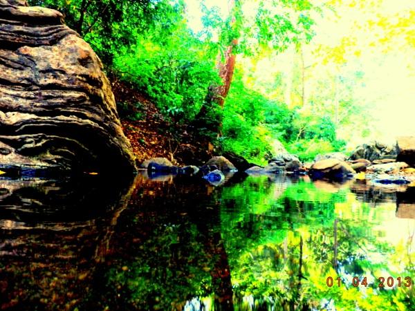 God's Best work .......nature!!!