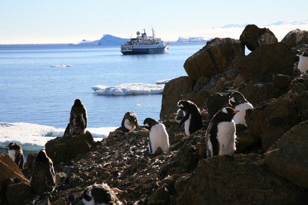 Antarctica by brianwakeling