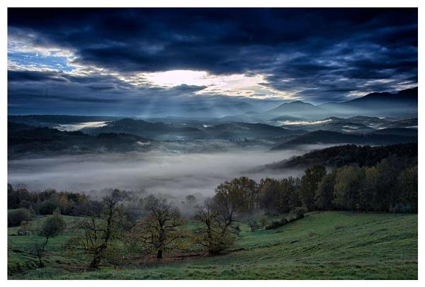 Morining Mist by Escaladieu