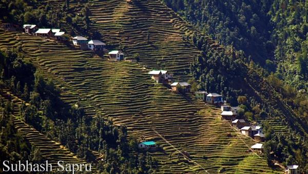 Hills by Subhashsapru