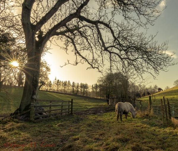 Countryside by Giorgie0