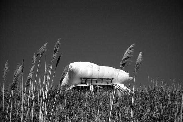 Heavenly pillow by GoranStamenkovic