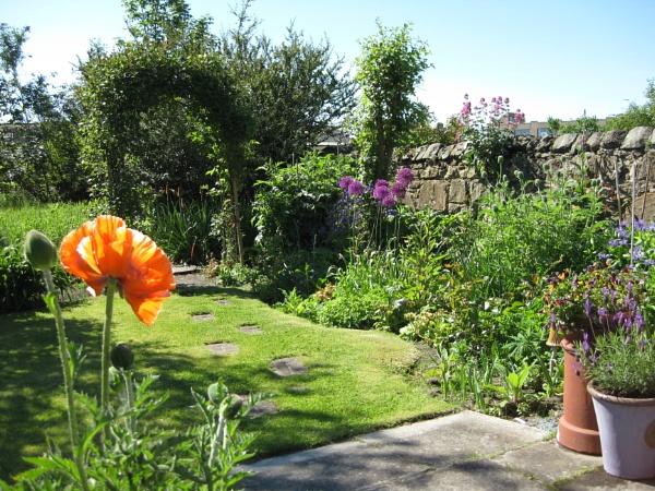 Garden Arch by freckleface1