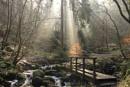 Wyming Brook by DrFeelgood