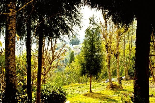 Nature\'s paradise - Rishyap .. by prabirsenuk