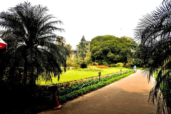 The gardens of Calcutta .. by prabirsenuk