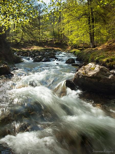 Pyrénées mountain stream by stepr17