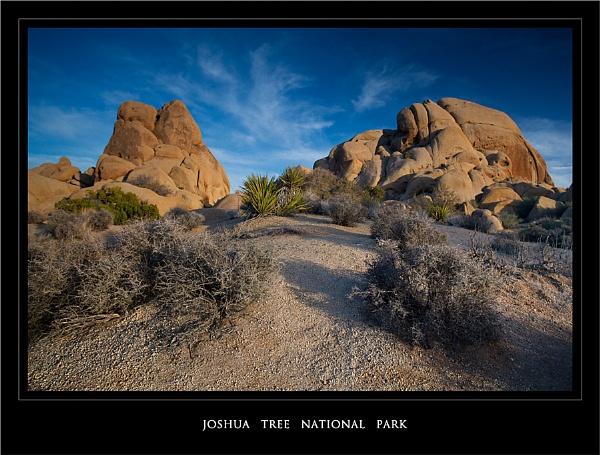 Joshua Tree Rocks by GillyB