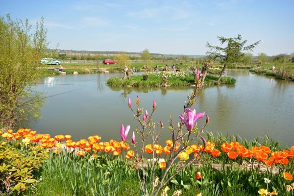 Tom`s Pond, Otley by robertt