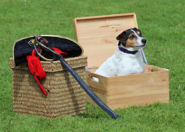 Jack In A Box by Trawden
