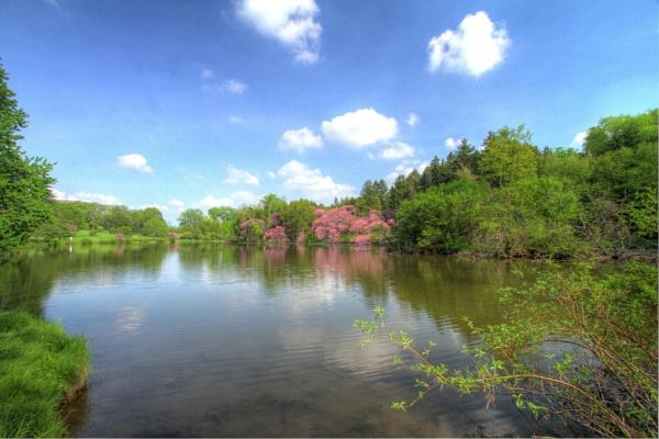 Lake Marmo of Morton Arboretum by ShotfromaCanon