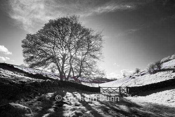 Sunlight & shadows, Upper Lathkill Dale - Peak District by grahamdunn