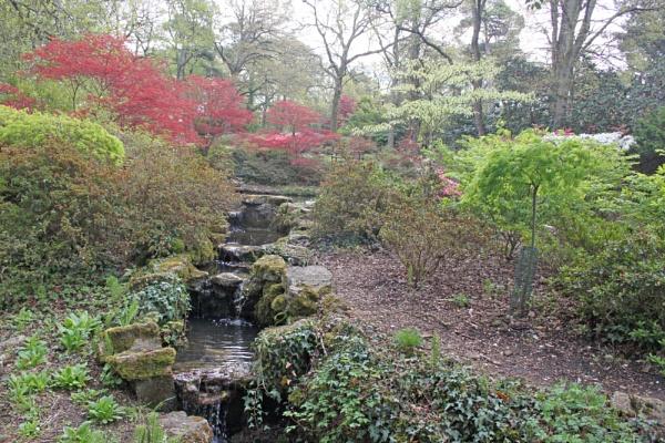 Exbury Gardens, Hampshire by oaklea