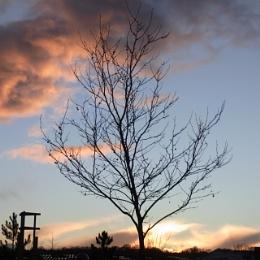 Sunset at Newton Abbot