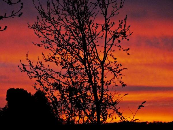Sunrise by crissyb