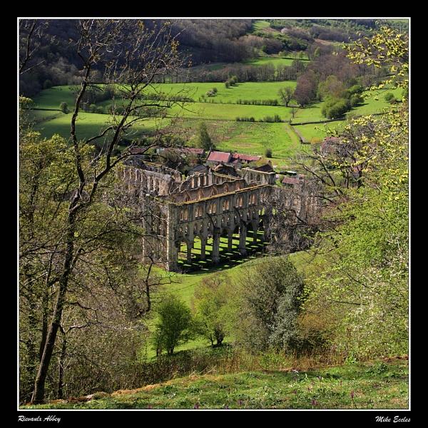 Rievaulx Abbey by oldgreyheron