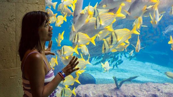 Oooo...Fishes! by JohnnyG