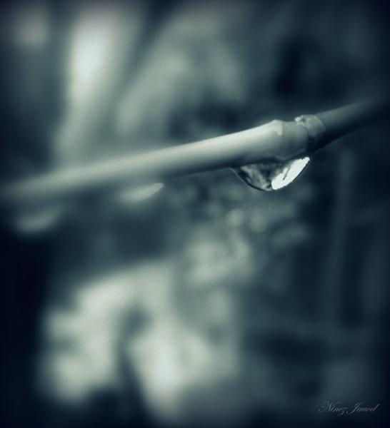 Untitled by 9z