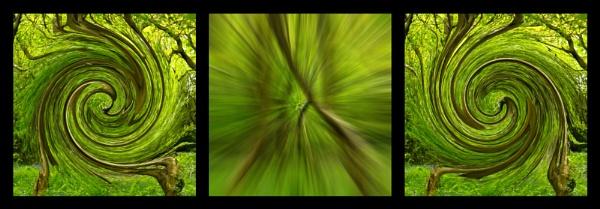 Greenwood - Triptych by Blakey_Boy