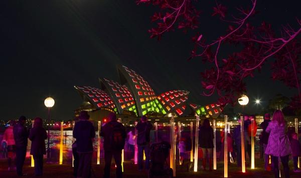 Vivid Light Festival 2 by OzzyApple