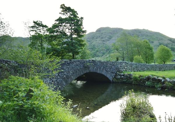 Cow Bridge by StevieRan