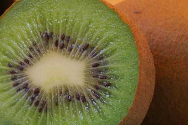 Kiwi fruit by Tigger1